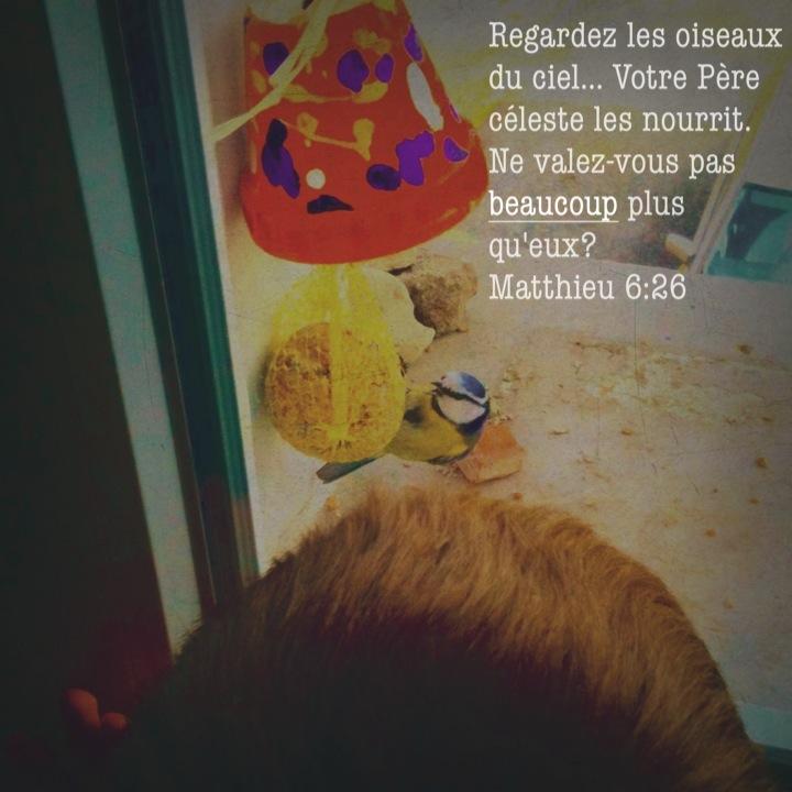 Matthieu 6_26