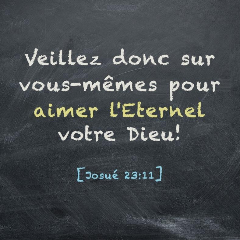 Josué 23:11