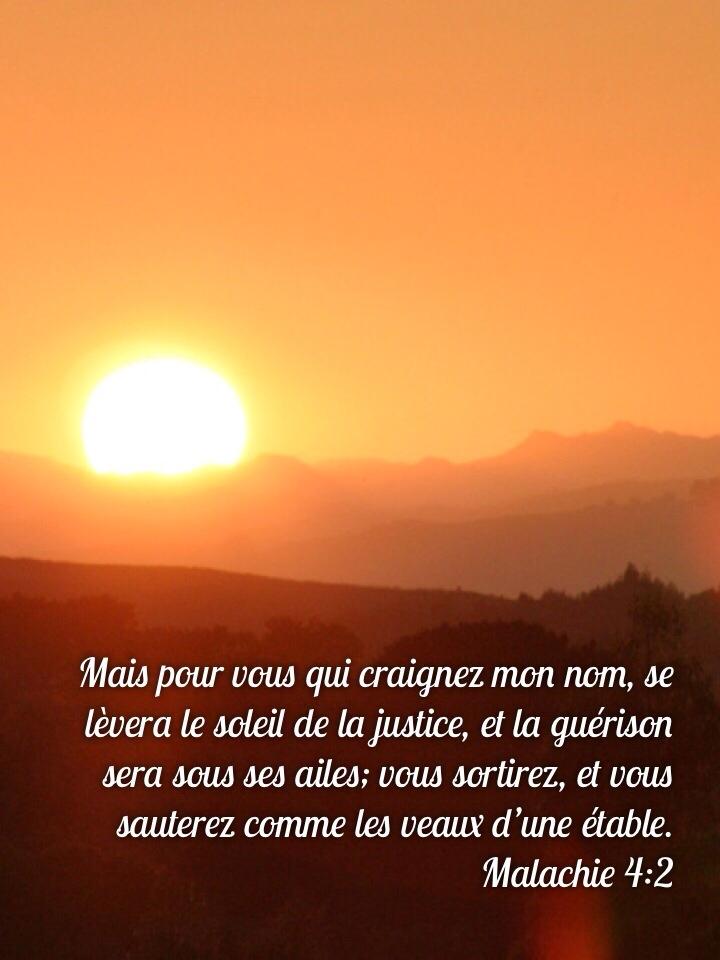 Malachie 4:2