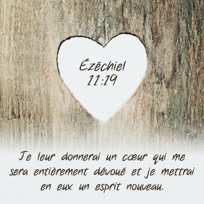 Ezéchiel 11:19