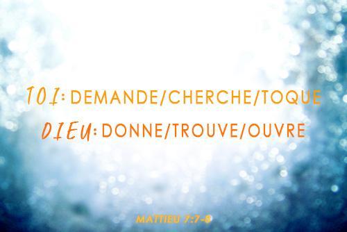 Demande_Cherche_Toque