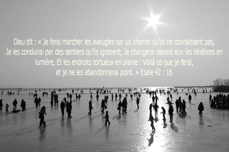 Esaïe 42:16