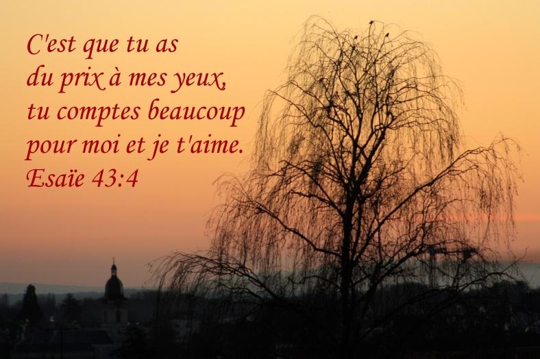 Esaïe 43:4