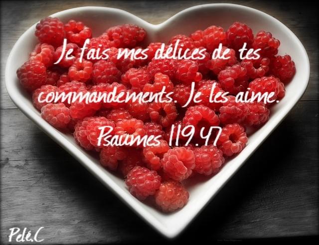 Psaume 119:47