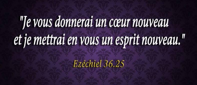 Ézéchiel 36:25
