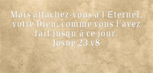 Josué 23:8