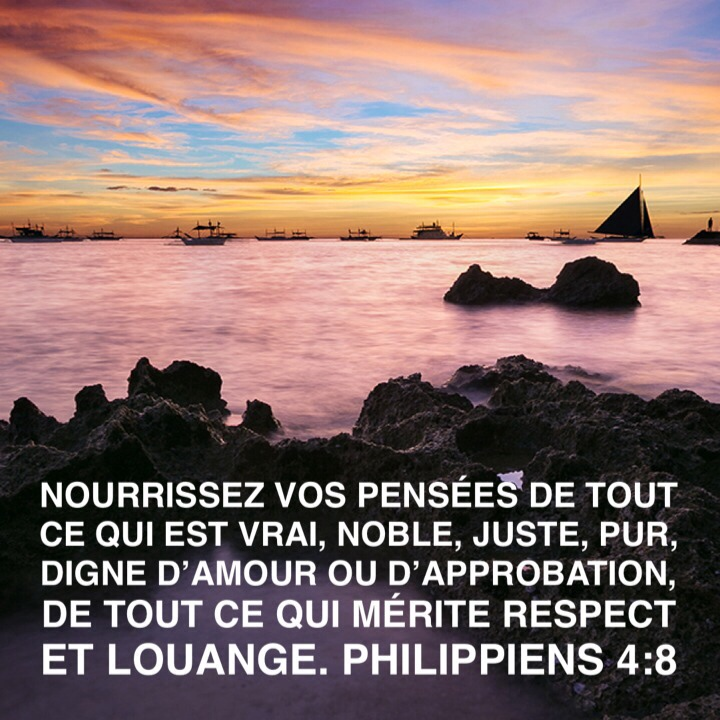 Philippiens4_8