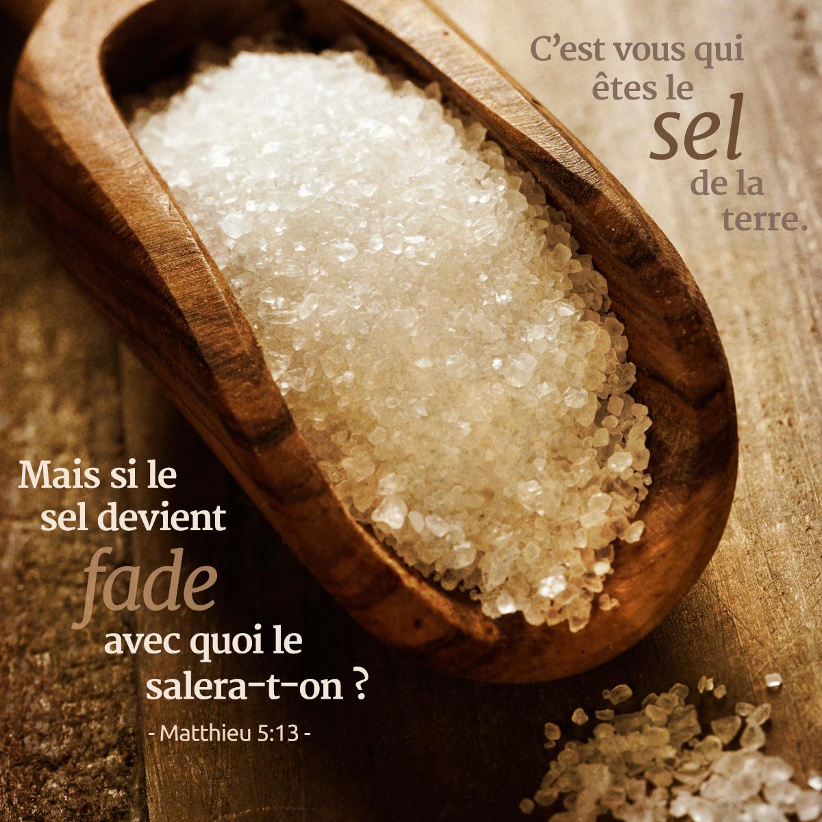 Bien-aimé Vous êtes le sel de la terre | 1001 versets EH93