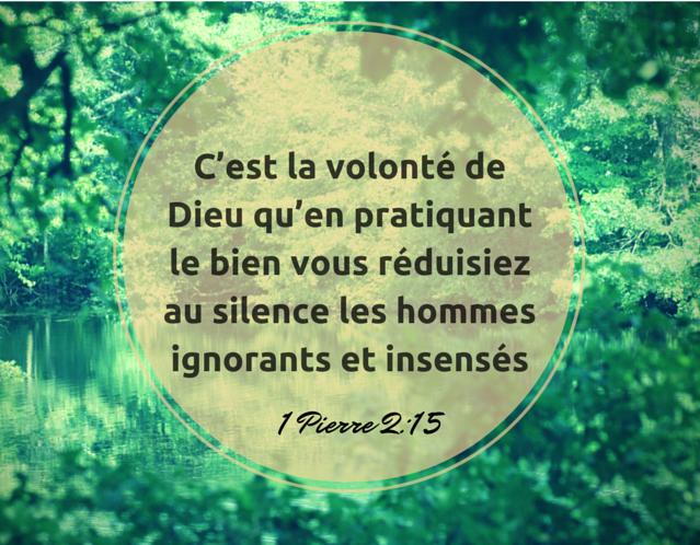 1 Pierre 2:15