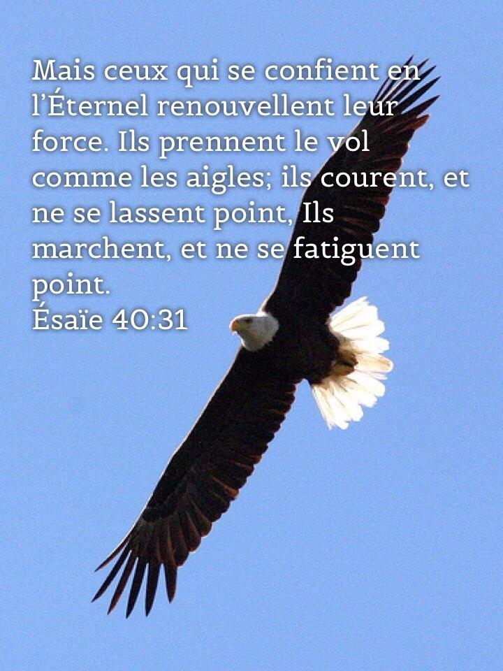 Esaïe 40_31
