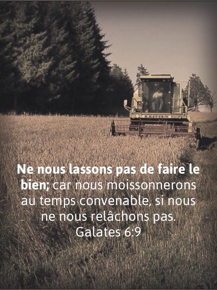 Galates 6:9