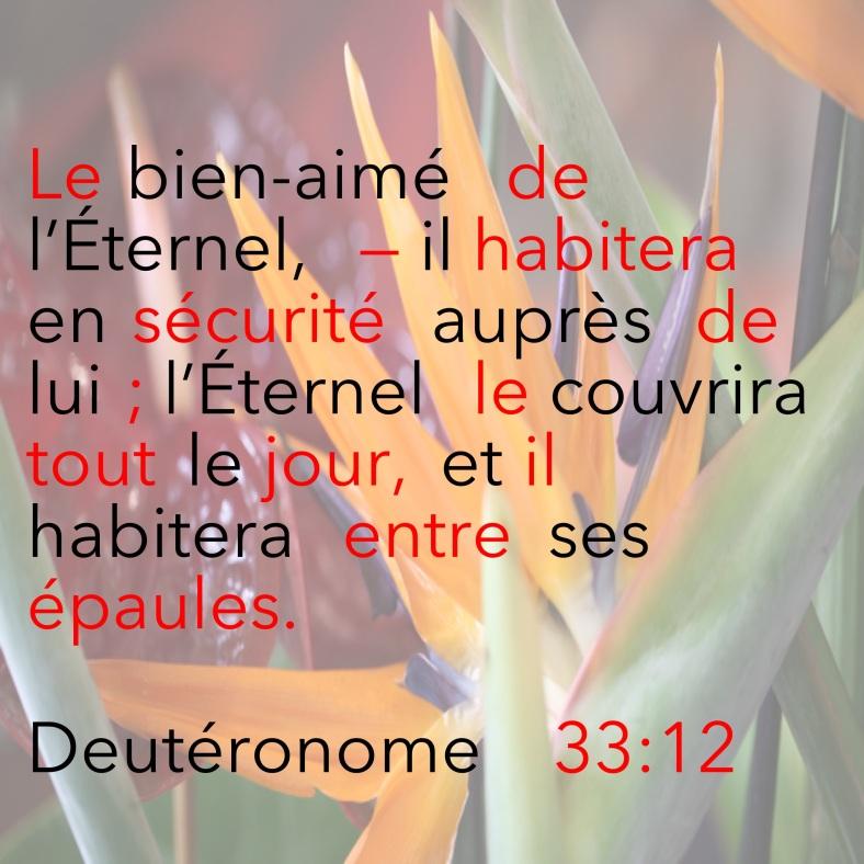 Deutéronome 33_12