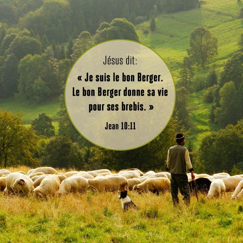 Jean 10:11