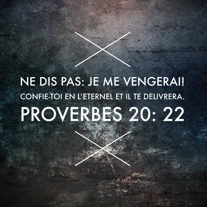 Proverbes 20_22