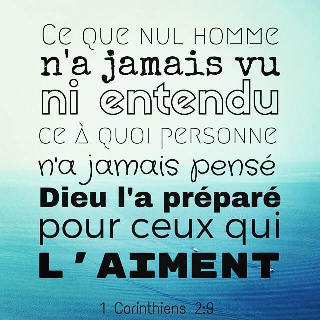 1 Corinthiens 2:29