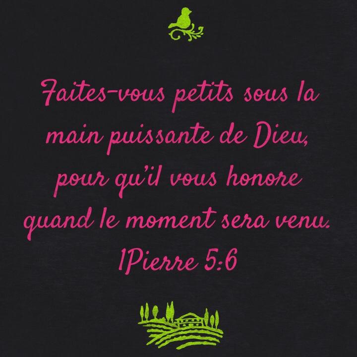 1Pierre 5:6