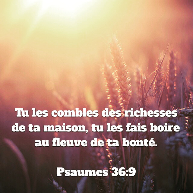 Psaume 36:5