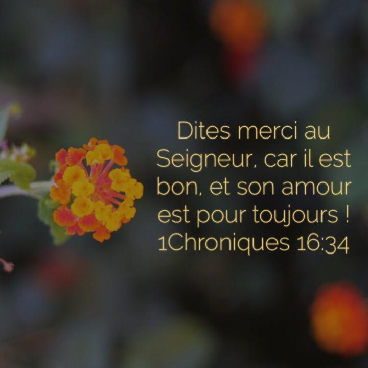 1 Chroniques 16:34
