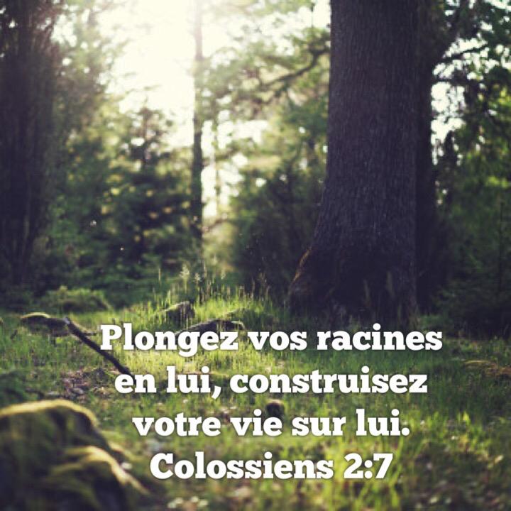 Colossiens 2:7