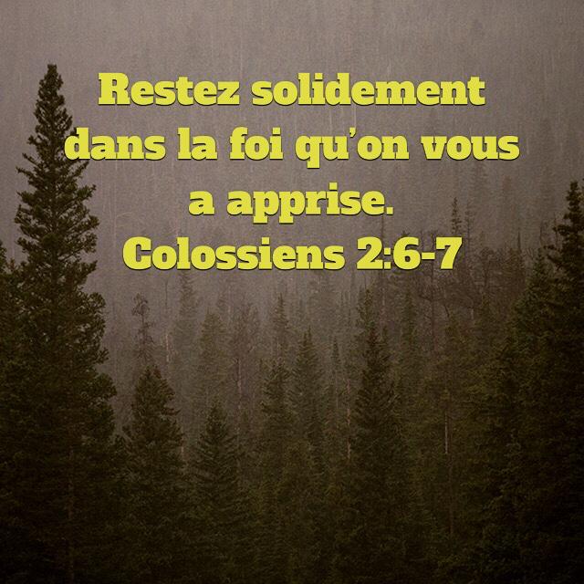 Colossiens 2:6-7