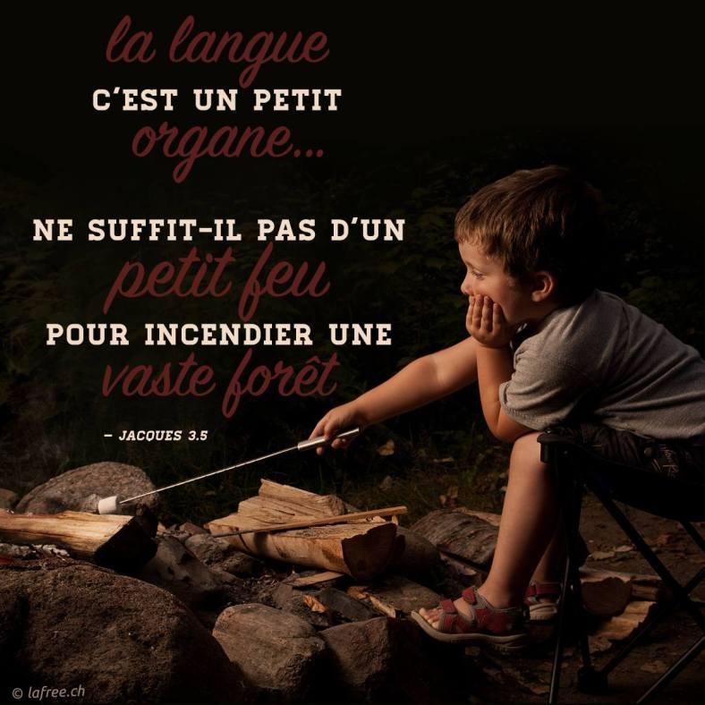 Jacques 3:5
