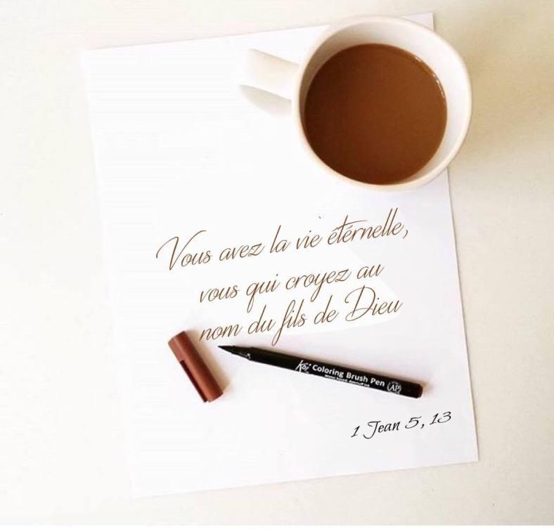 1 Jean 5:13