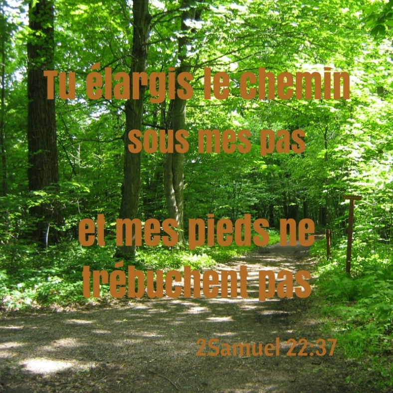 2 Samuel 22:37