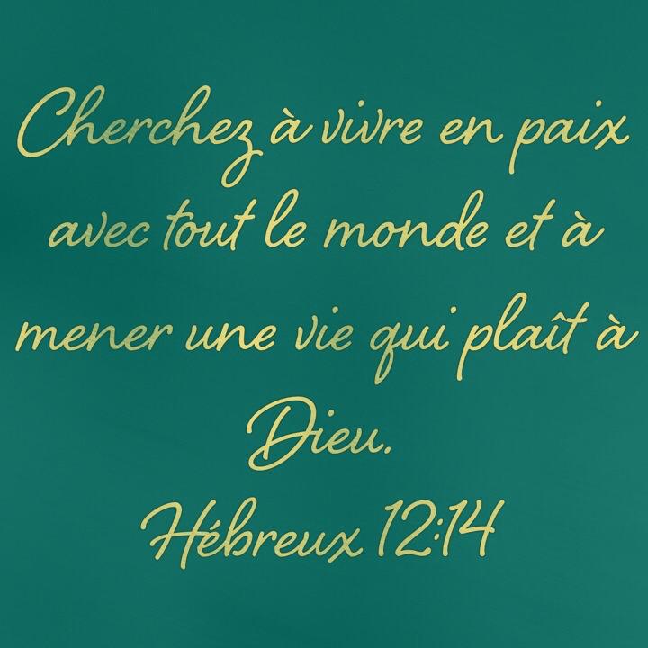 Hébreux 12:14
