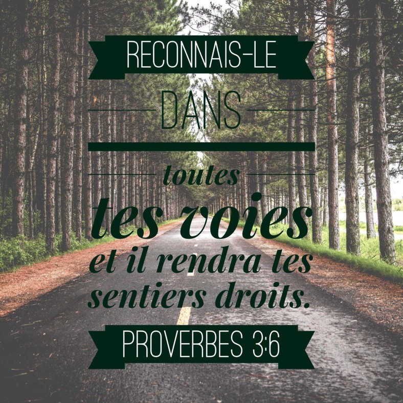 Proverbes 3:6