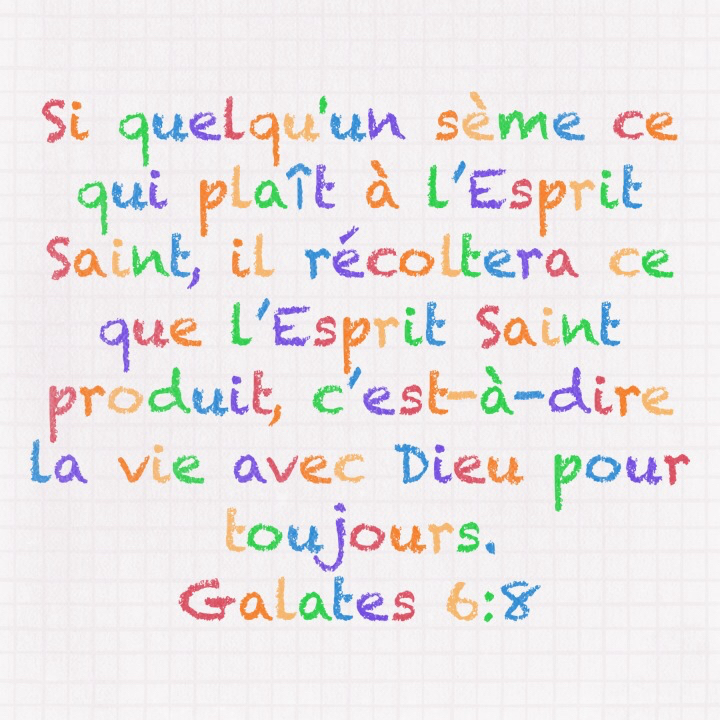 Galates 6:8