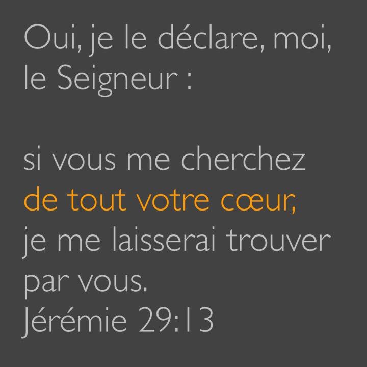 Jérémie 29:13