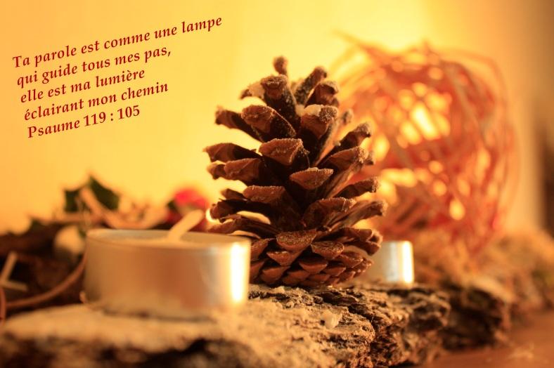 Psaume 119:105
