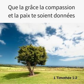 grâce, compassion, paix